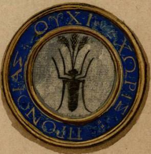 La fourmi de Jean d'Aucy