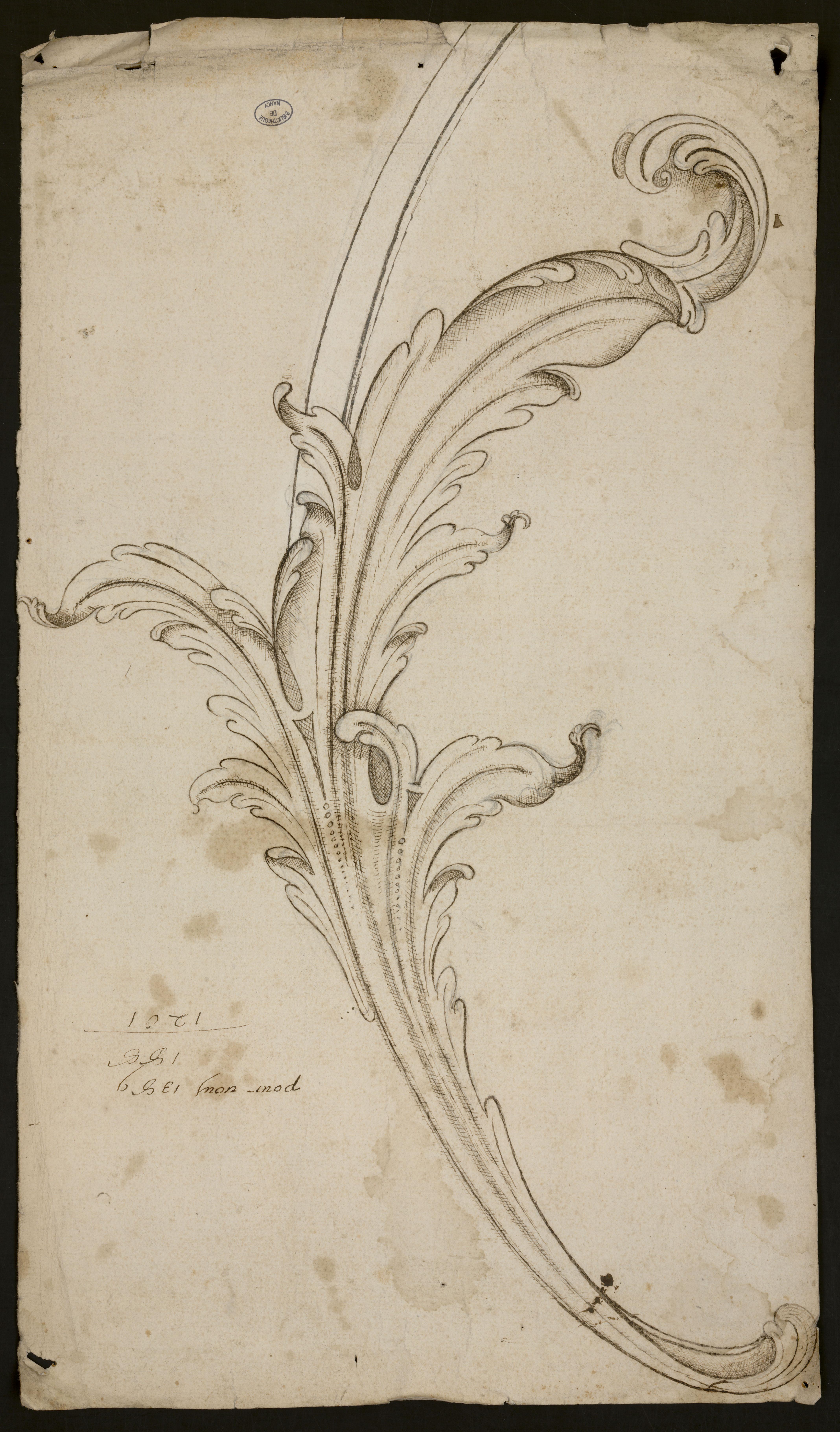 Feuille d'acanthe, modèle pour ferronnerie, attribué à Jean Lamour